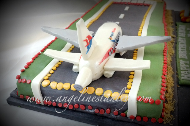 Plane Cake Malaysian Airlines 737